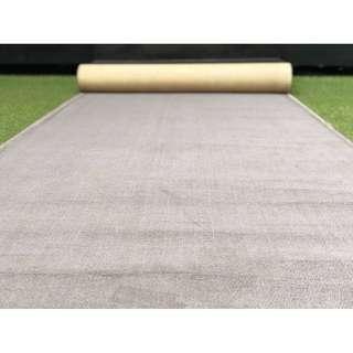 Eva Air Grey Carpet 4x20ft