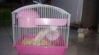 Kandang Hamster + hamster betina