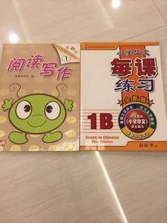 🚚 P1 Chinese assessment books