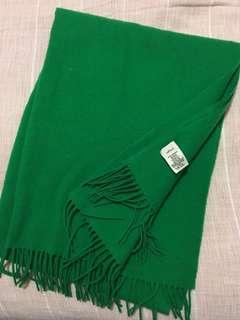 Aritzia Wilfred Green Scarf