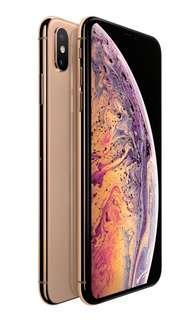 iPhone Xs Max 256GB globe locked