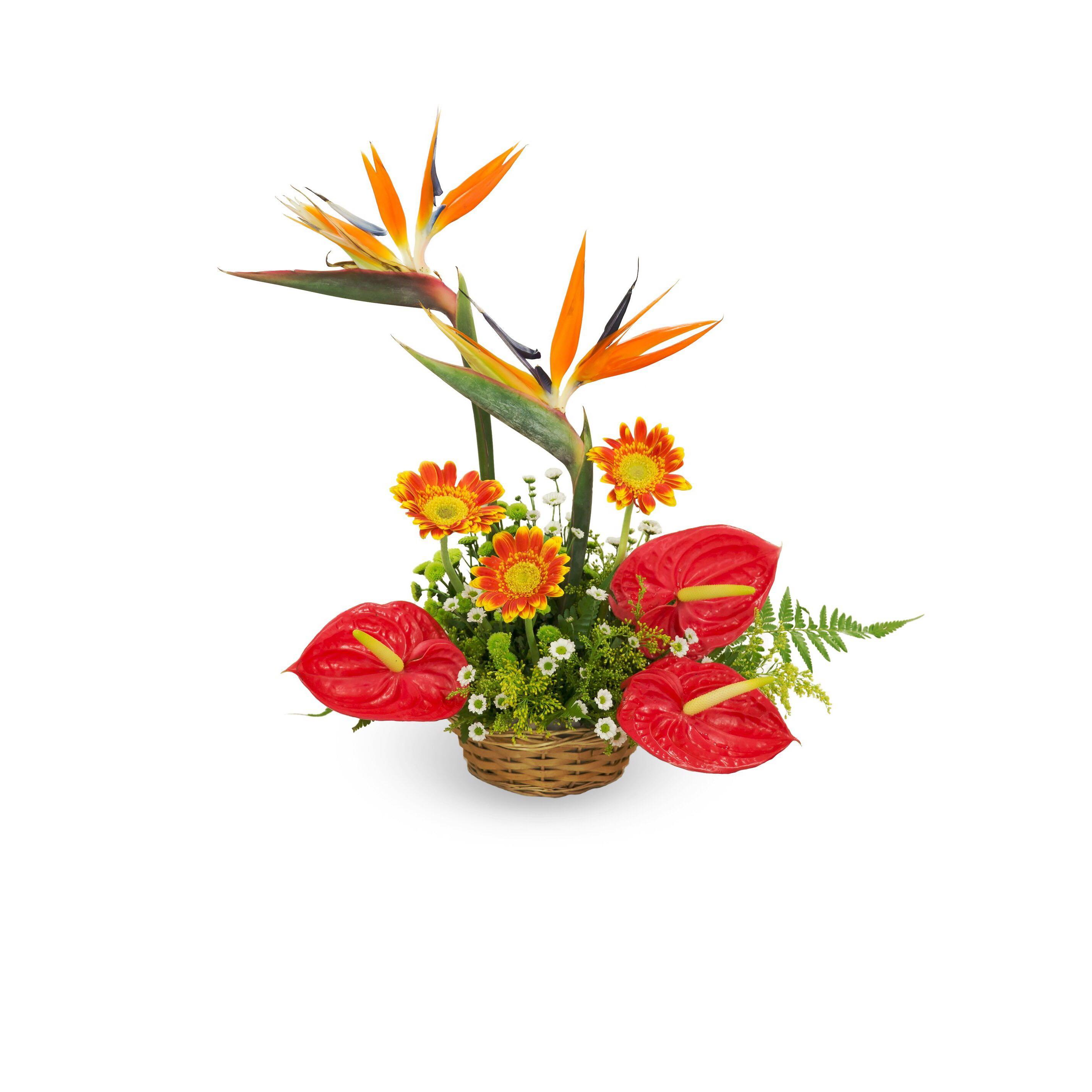 Birds Of Paradise Anthurium Table Flower Centrepiece Floral Arrangement Home Decor Office Decor Gardening Flowers Bouquets On Carousell