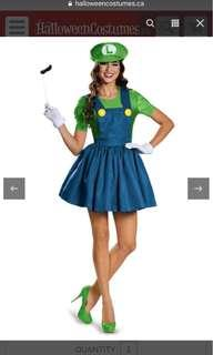 Luigi Skirt Version Adult Costume