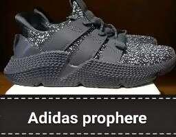 Adidas prophere