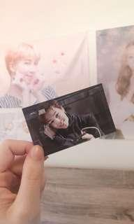 Jimin Dark and Wild PC