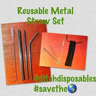 Reusable Stainless Steel Straw Set