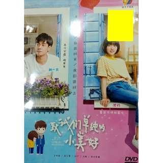Taiwan Drama A Love So Beautiful 致我们单纯的小美好 DVD