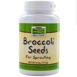 Broccoli Sprouts seeds
