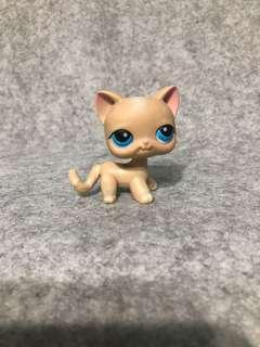 Littlest pet shop beige shorthair cat
