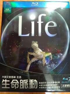 藍光BD生命脈動:精裝四碟版Life(得利公司貨) - 有國語發音 - 英國 BBC