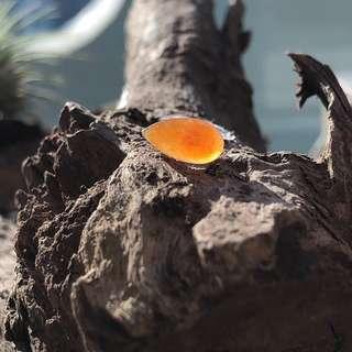 A-Grade Type A Natural Red Jadeite Jade Pear (Droplet) Piece No.130061