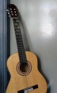 Guitar ,Carcassi ,with bag