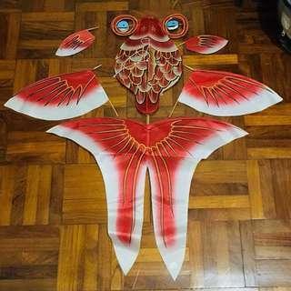 濰坊風箏 上海購買 金魚造型 眼可旋轉 大小請按圖