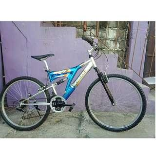 PANASONIC ALLOY DUAL SUS. MT. BIKE (FREE DELIVERY AND NEGOTIABLE!) not folding