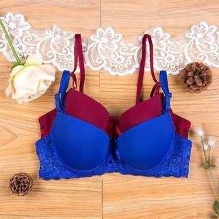 [FREE POS] Lace Push Up Bra 34B