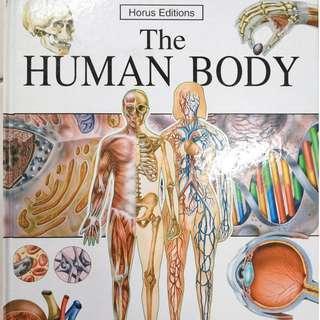 🚚 The Human Body (Horus editions)