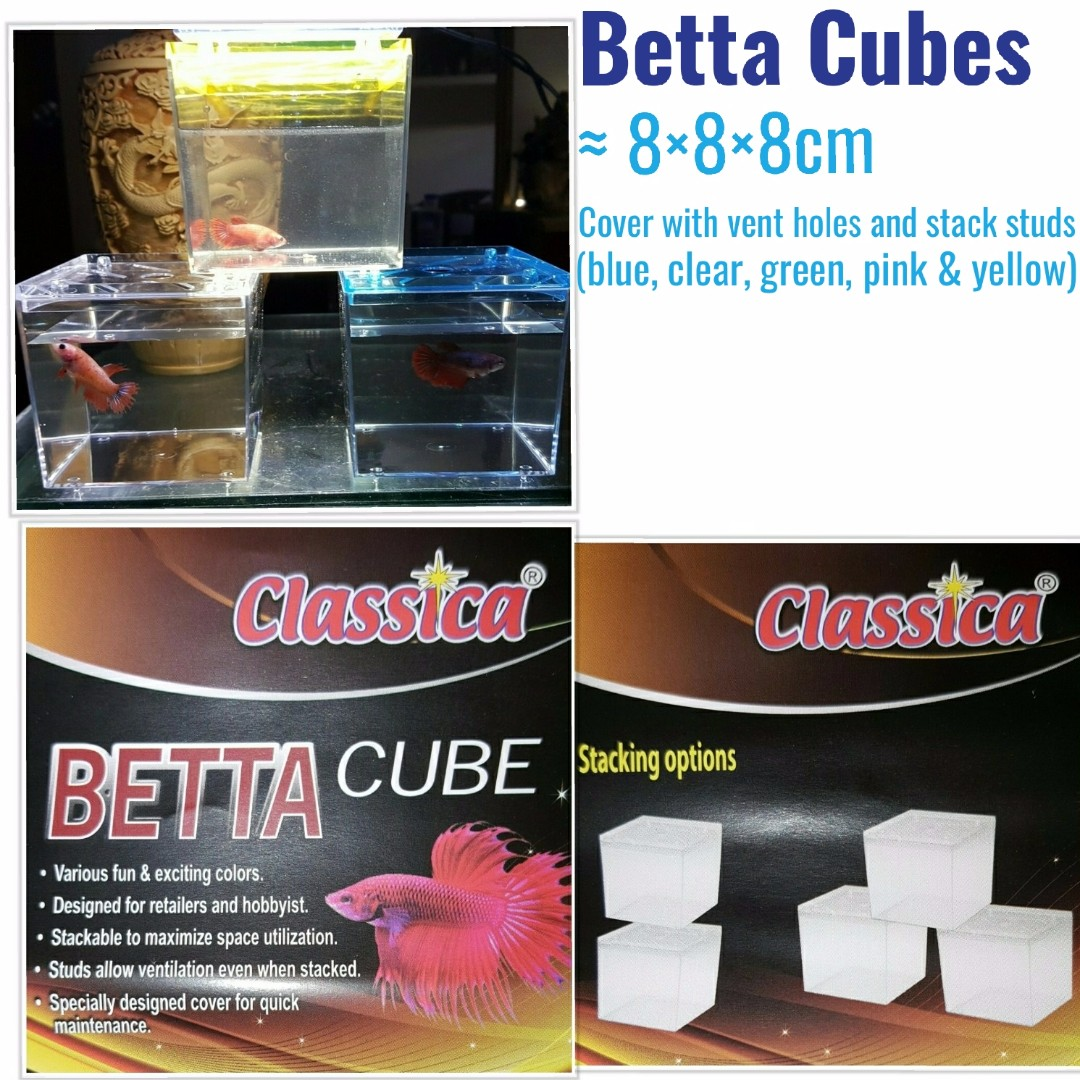 adccc28f9c6be3 Sold out, will not restock in the near term... Betta Cubes / mini ...