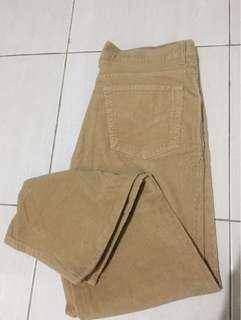 Celana Panjang Burberrys
