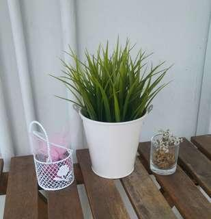 Rent Rental: White Artificial Green Grass Plant Pot