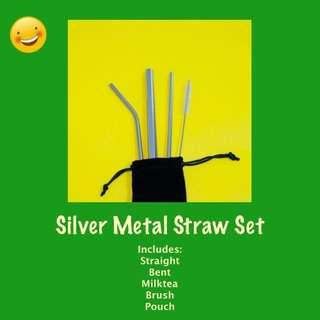 Silver Reusable Metal Straw Set