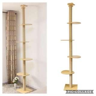 🚚 (New!) Pinewood ceiling cat scratch tree