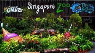 4 Singapore Zoo admission with tram ride(adult)