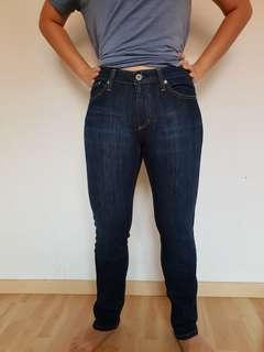 AG Adriano Goldschmied the premiere skinny straight women jeans