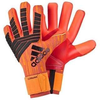 Adidas Predator Trans Climawarm Goalkeeper Gloves