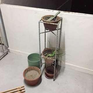 5 Pots and a Metal Rack