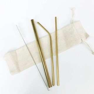 Stainless Eco Straw Set
