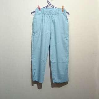 cropped ankle pants in powder blue