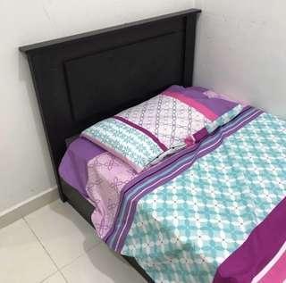 Single bedsheet & 1 pillow case set