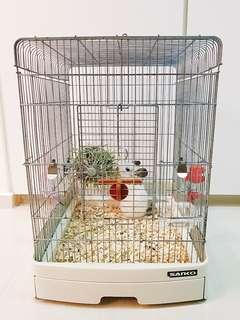 Bird Cage Small Animal Cage Chinchilla Rabbit SANKO CAGE