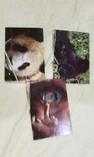 Preloved animal postcards set (unused)