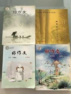 Secondary Chinese guide books