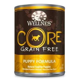 Wellness Core Puppy Wet Food