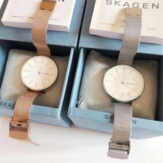 Skagen Mesh Watch