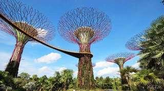 5 tiket for Garden by the bay singapore