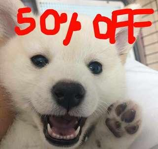 BUY 1 AND GET ANOTHER ONE 50% OFF!
