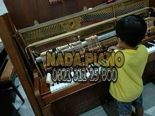 Sercvice Piano & Les Piano Private