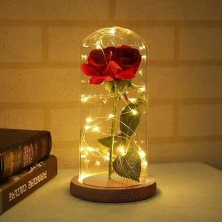 Enchanted Rose Lamp Beauty and the Beast