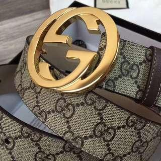 Gucci Belt - Canvas