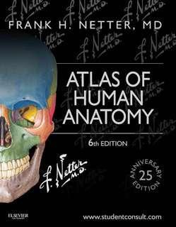 Netter - Atlas of Human Anatomy, 6th Ed