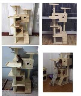 🚚 (New!) Pinewood cat scratch tree