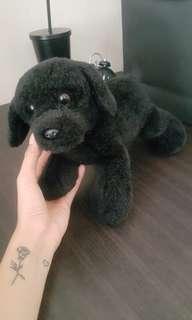Doggy doll