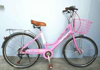 "24"" Lady Bicycle"
