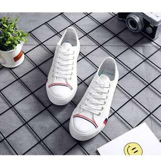 Brand New Canvas Shoes