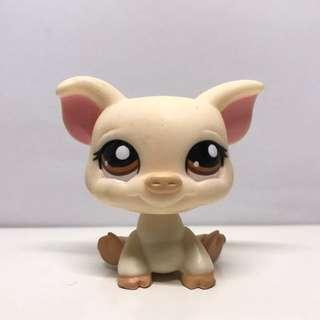 LPS pig