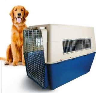XXL airline approved dog crate