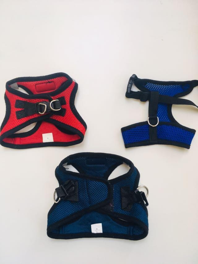 Red and Blue Harnesses
